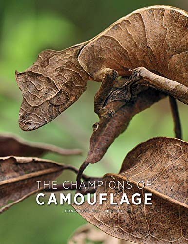 Cover of the book The Champions of Camouflage by Jean-Philippe Noel